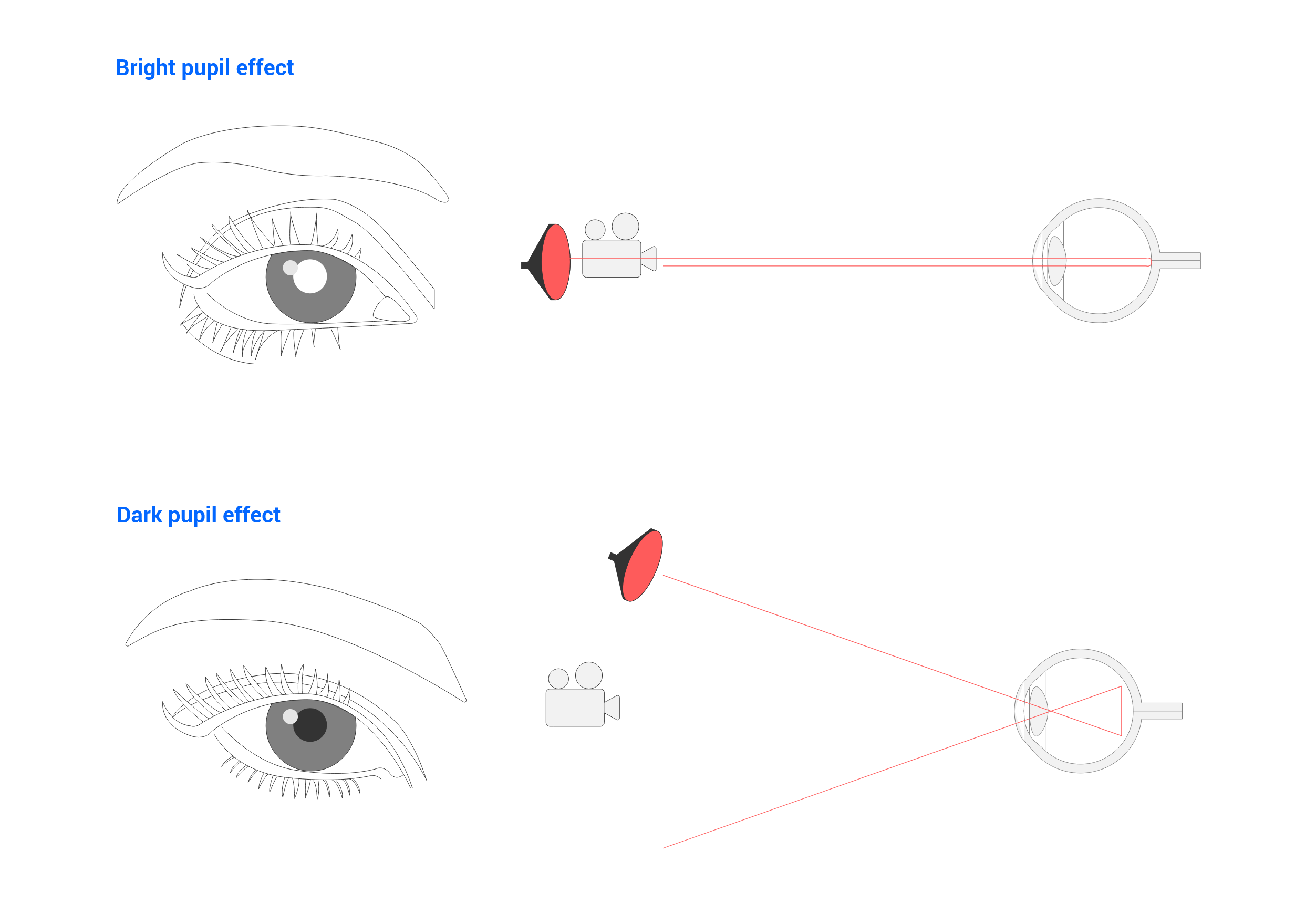 Bright and dark pupil systems graph of eye tracking
